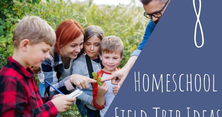8 Best Homeschool Field Trip Ideas in 2021