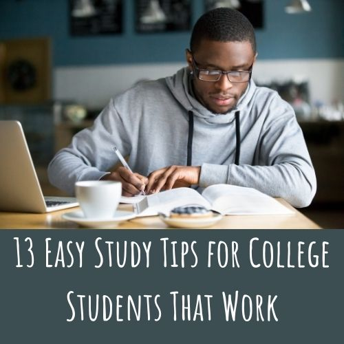 college students study stips